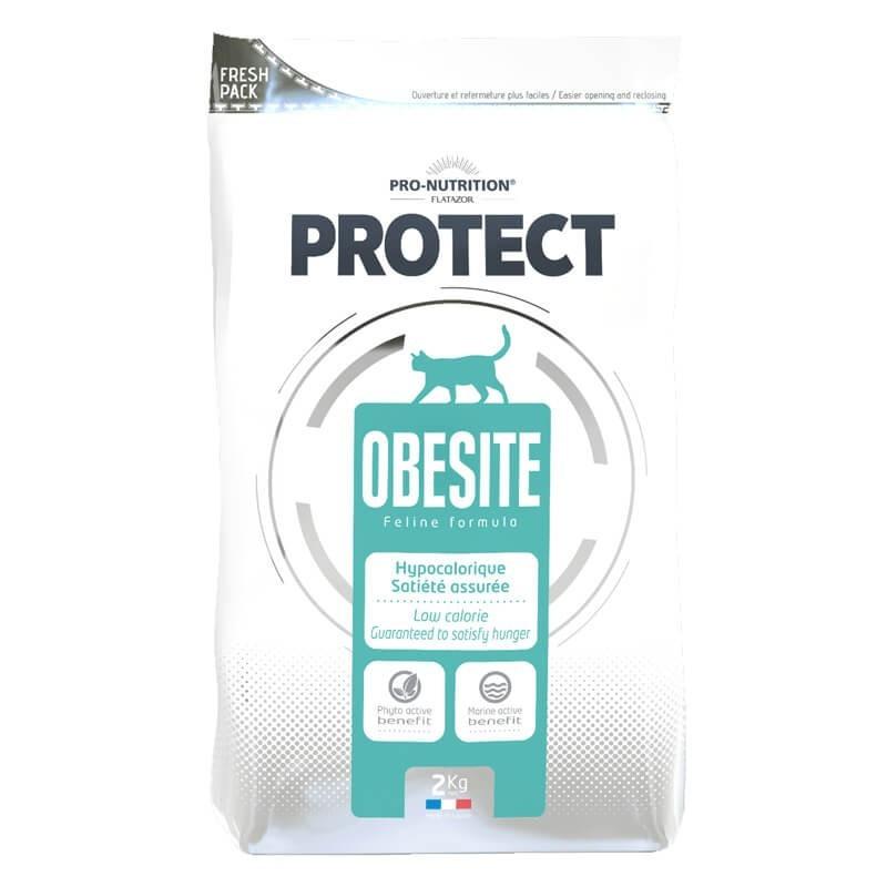 Protect Obesite Gatos