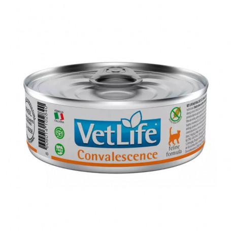 Vet Life Feline Convalescence Húmedo