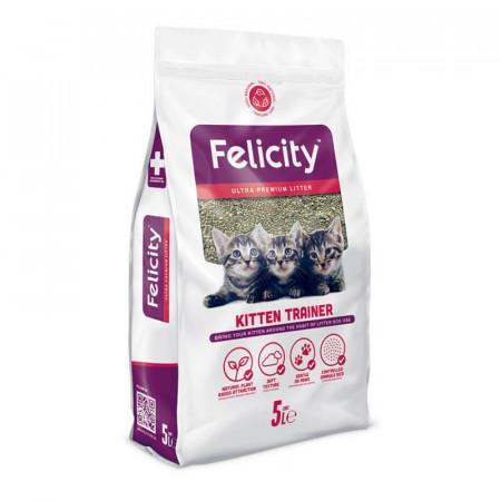 Felicity Kitten Trainer