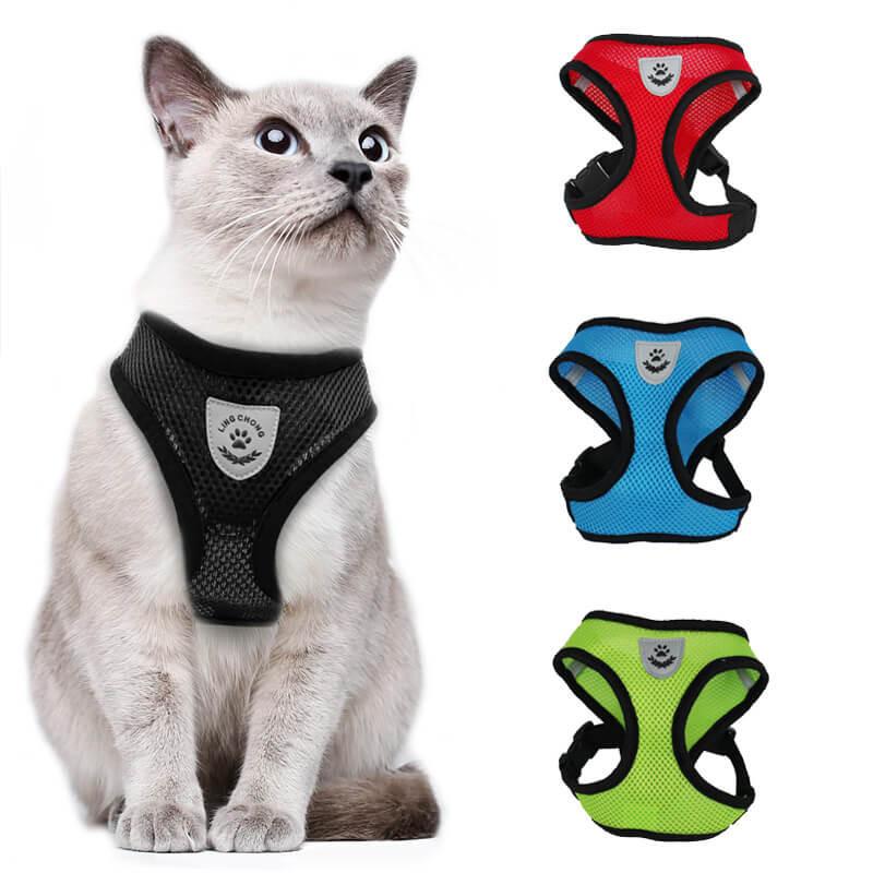 ZeeCat Collar para Gatos Salina
