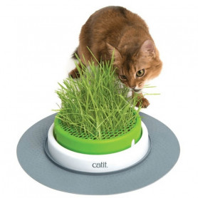 Catit Germinador Cat Grass Planter
