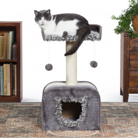 Melena de León para Gatos