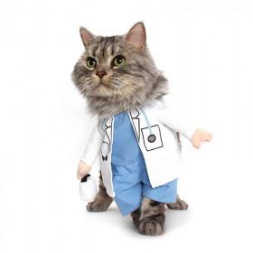 Disfraz de Doctor para Gatos