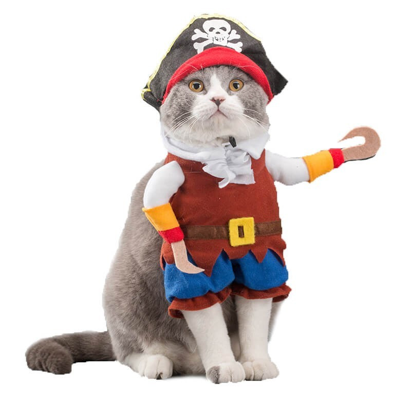 Disfraz de Pirata para Gatos