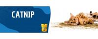 ▷ Catnip para Gatos al Mejor Precio