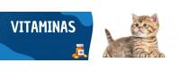 ▷ Vitaminas para Gatos al Mejor Precio