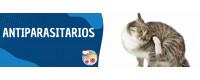 ▷ Antiparasitarios para Gatos al Mejor Precio